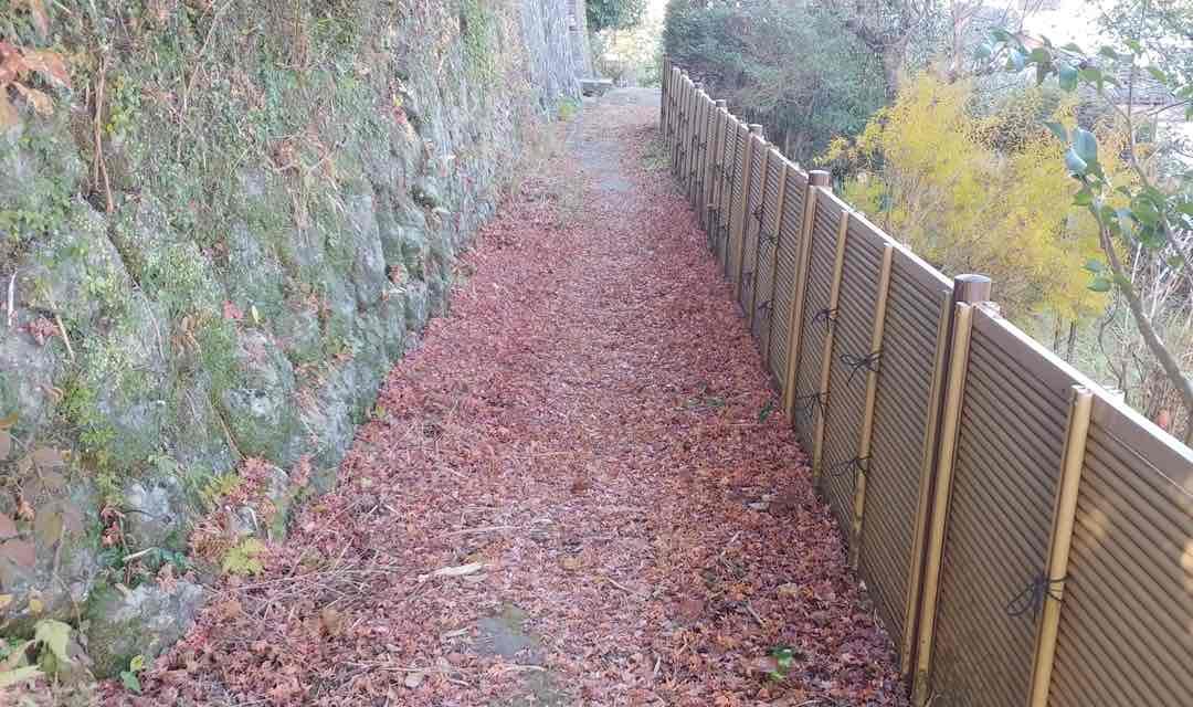 愛染堂 紅葉の絨毯