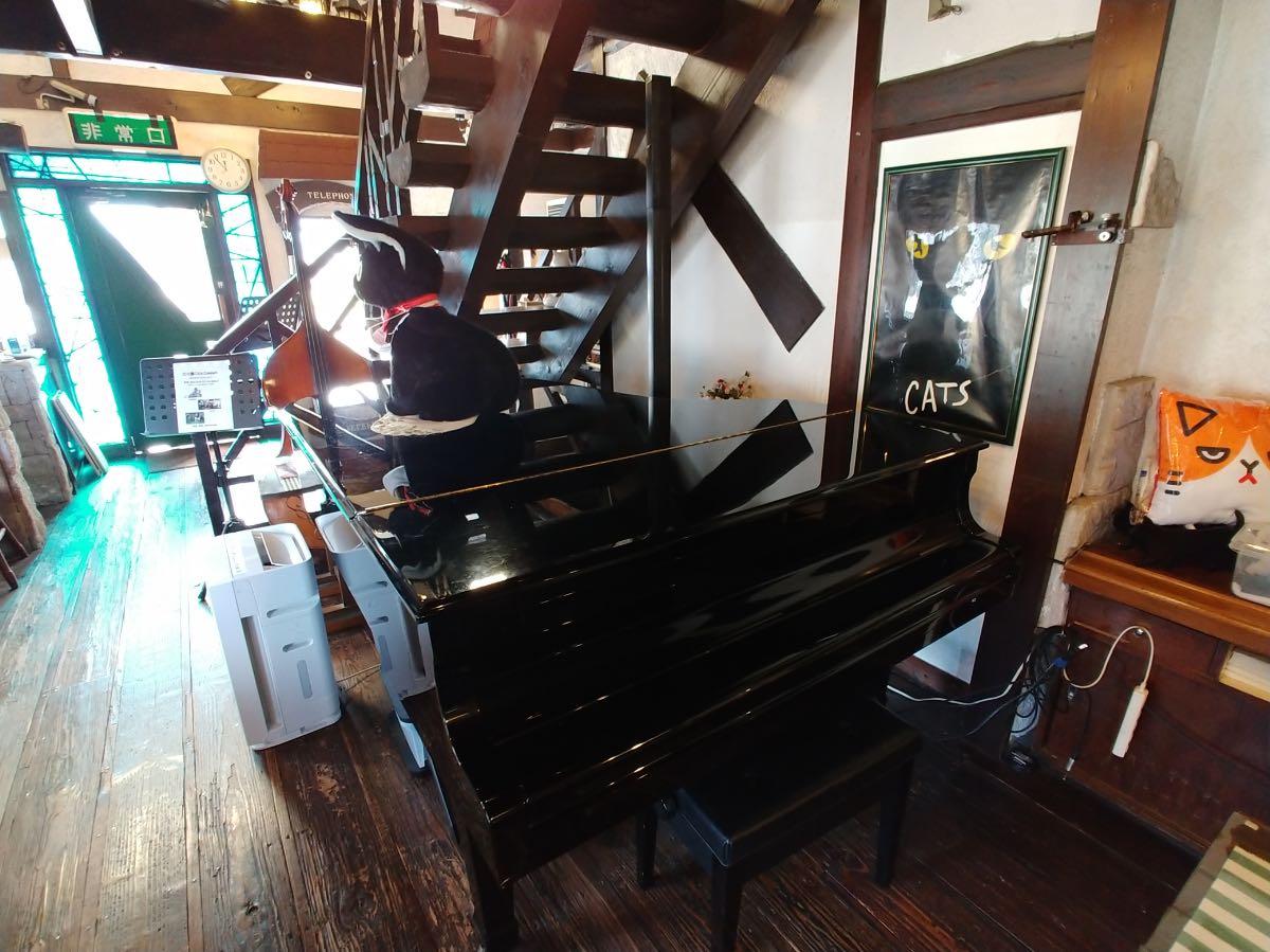 音猫 グランドピアノ