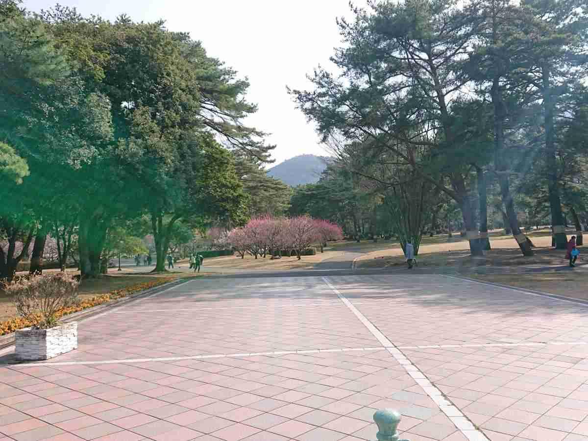 別府公園・北門