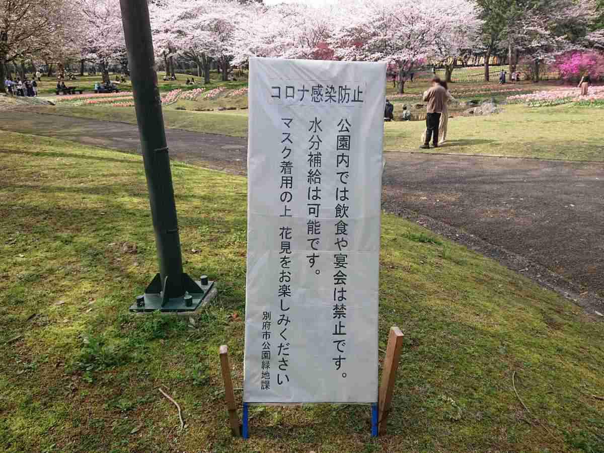 別府公園・お花見シーズン中の飲食禁止看板