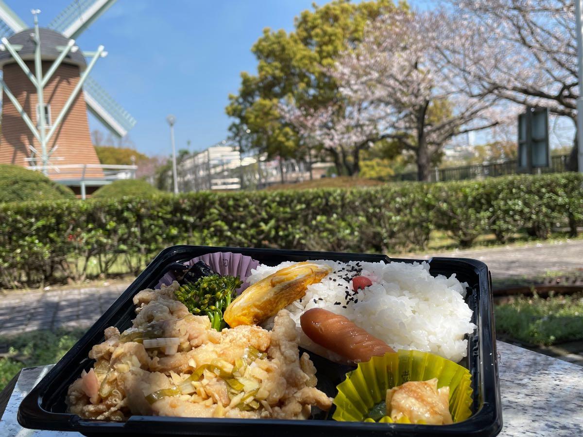MOGUMAMA 油淋鶏弁当と桜