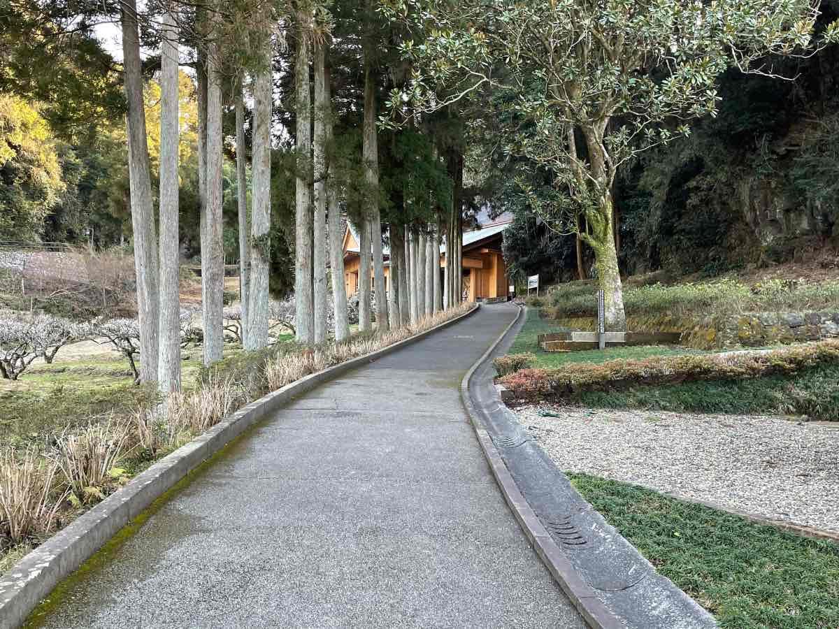 臼杵石仏 ホキ第2群への道