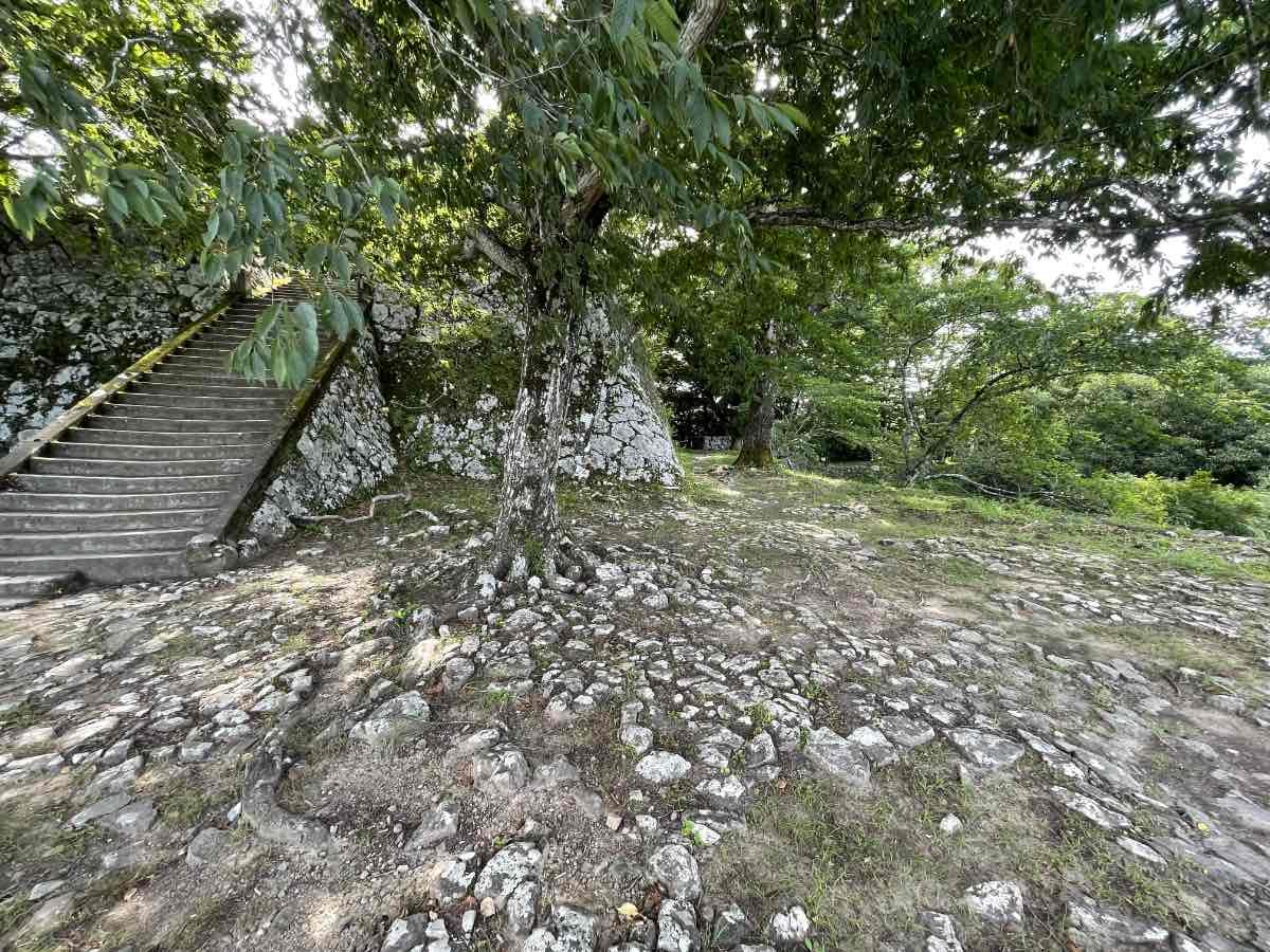 佐伯城跡 階段状の石垣への道