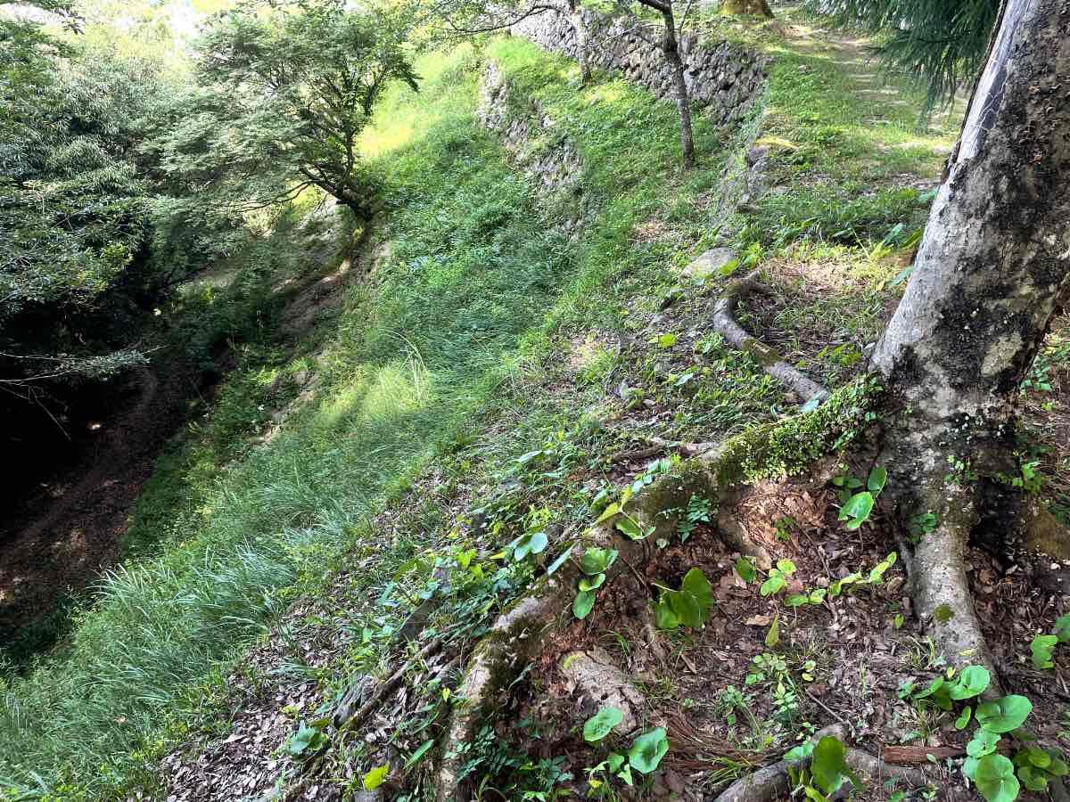 佐伯城跡 階段状の石垣