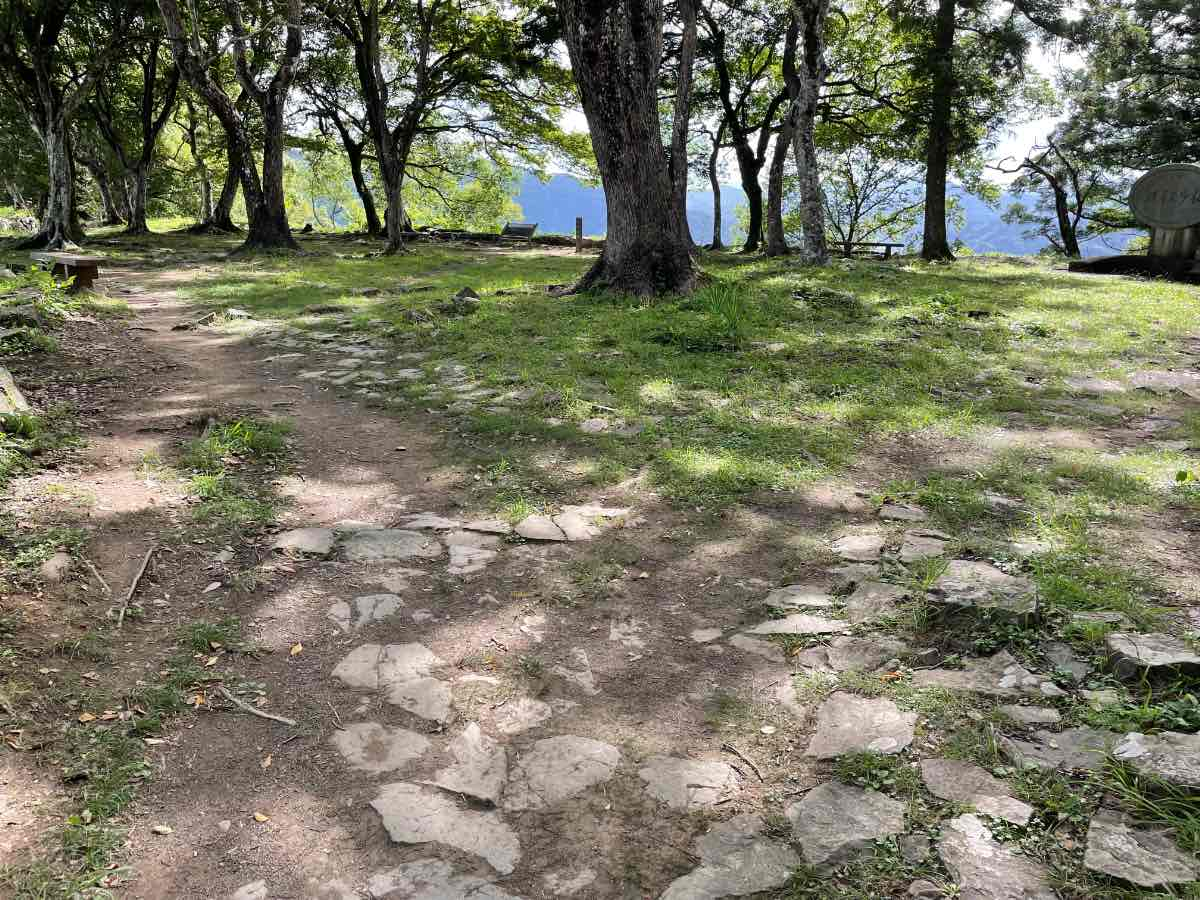 佐伯城跡 山頂の道