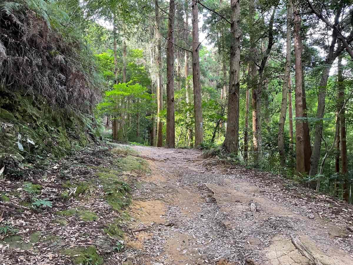 佐伯城跡 登りの独歩碑の道